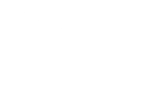 Wies Vink photography Logo